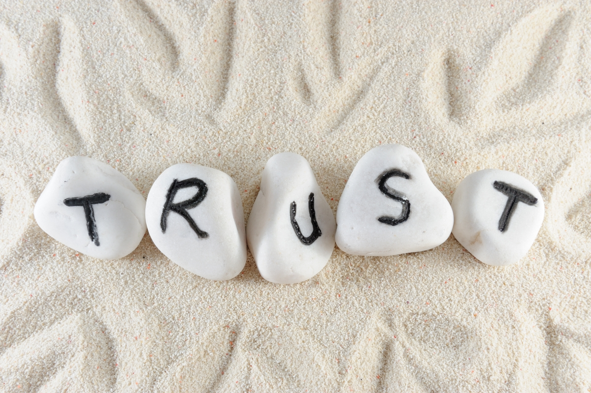 Cross-Cultural Leadership: How to Build Mutual Trust?