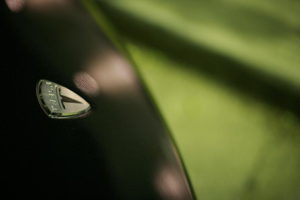 Tesla Motors logo on green background