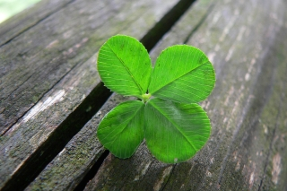 Four-Leaf Clover on Wooden Table, Ownership