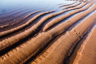 Tidal patterns, change, Michael Puett, Leadershipwatch